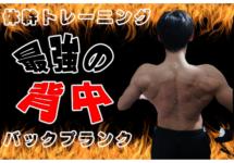 「背中美人」が手に入る体幹トレーニング「バックプランク」